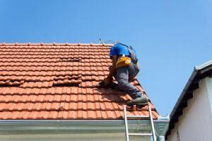 Nettoyage de toiture Feyzin 69320
